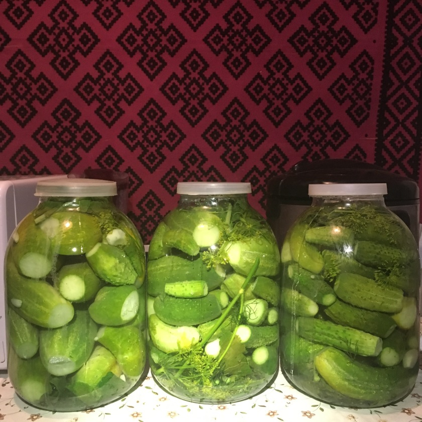 pickles_Ukrainian village_mehmehsasa.jpg