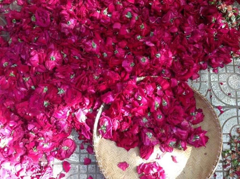 rose cakes Yunnan roses